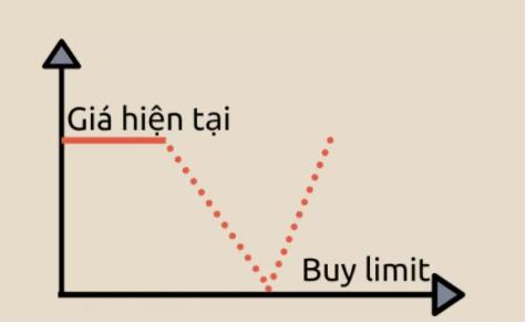 buy-limit-la-gi